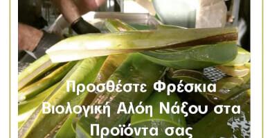 ALOE VERA NAXOS Φωτογραφία 2